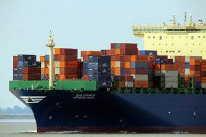 logistikos palsaugos